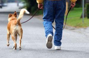[Feldenkrais Helps Walking]